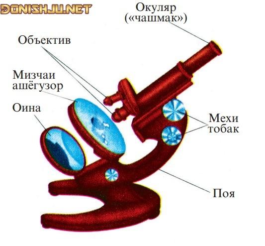 Маълумот дар бораи Микроскоп